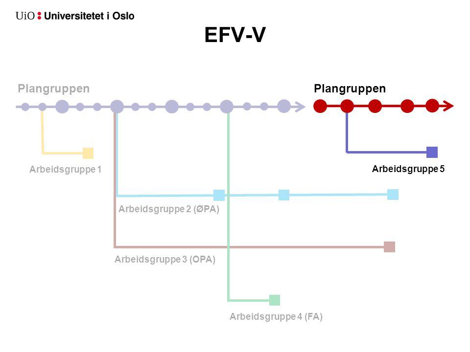 EFV-V Plangruppen Plangruppen Arbeidsgruppe 1 Arbeidsgruppe 2 (ØPA)