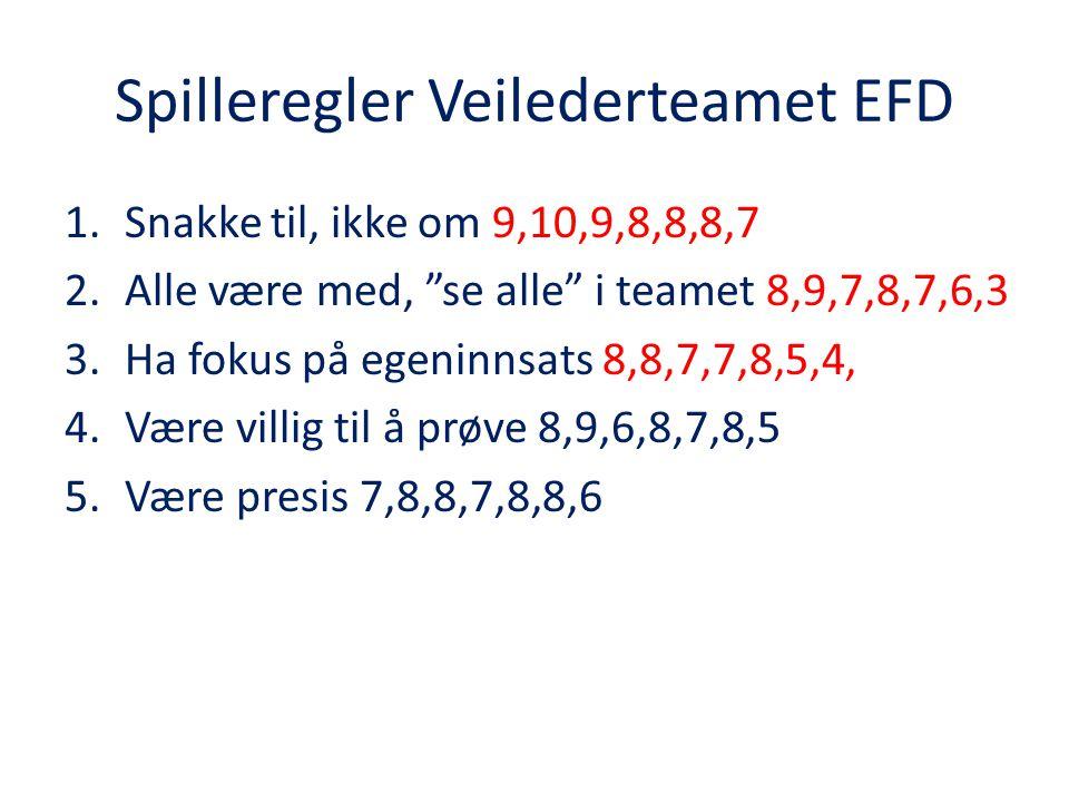 Spilleregler Veilederteamet EFD