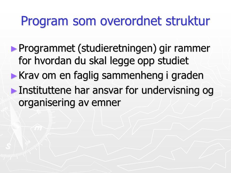 Program som overordnet struktur