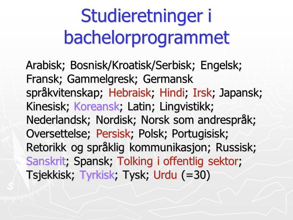 Studieretninger i bachelorprogrammet