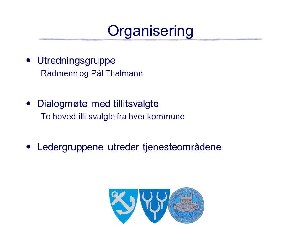 Organisering Utredningsgruppe Dialogmøte med tillitsvalgte