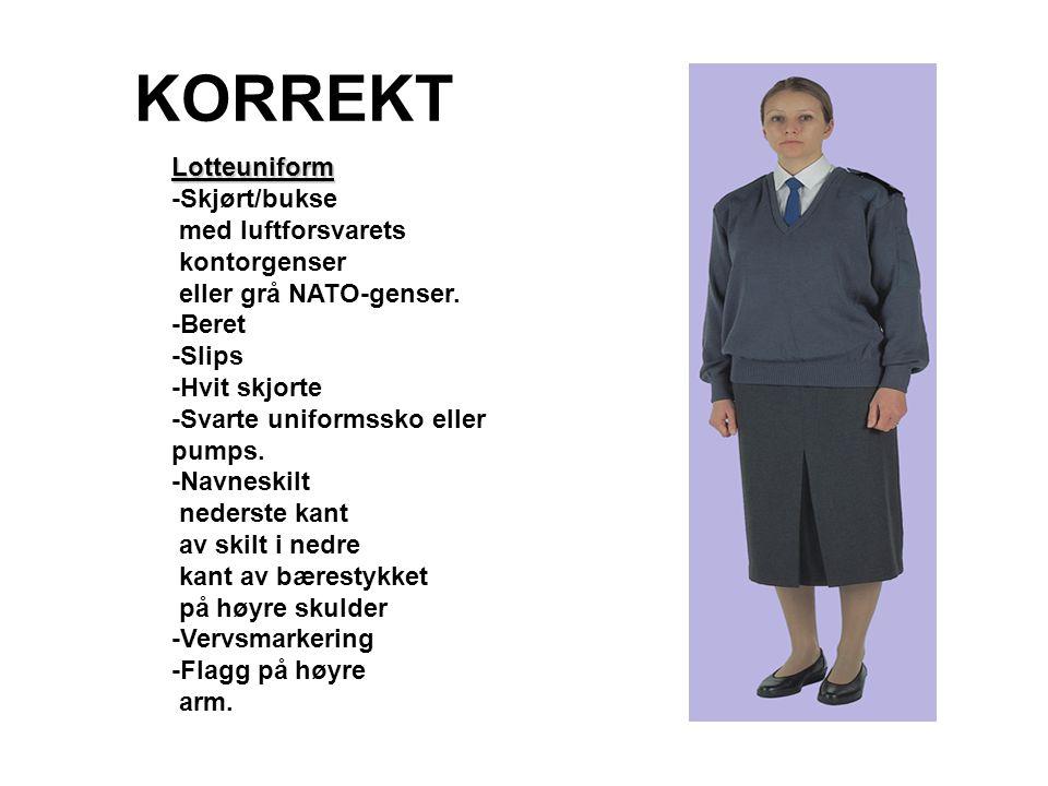 KORREKT Lotteuniform -Skjørt/bukse med luftforsvarets kontorgenser