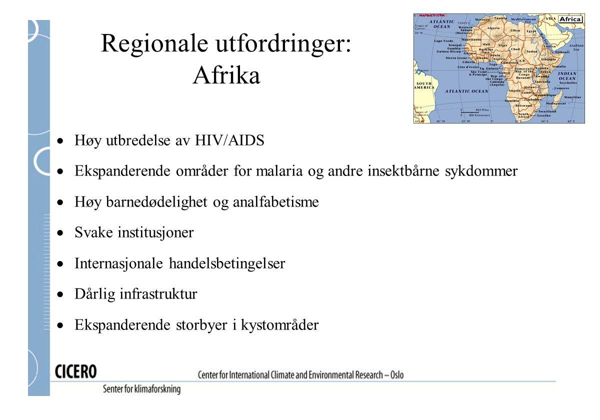 Regionale utfordringer: Afrika