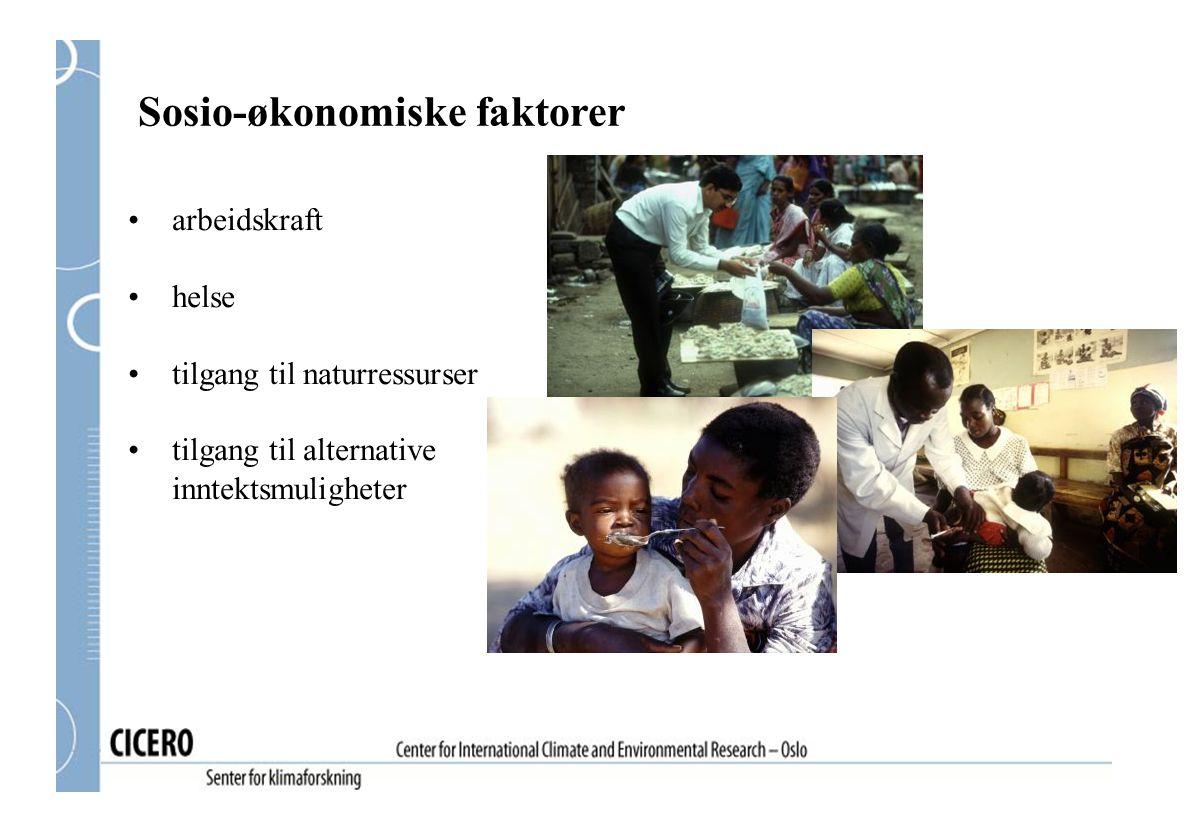 Sosio-økonomiske faktorer