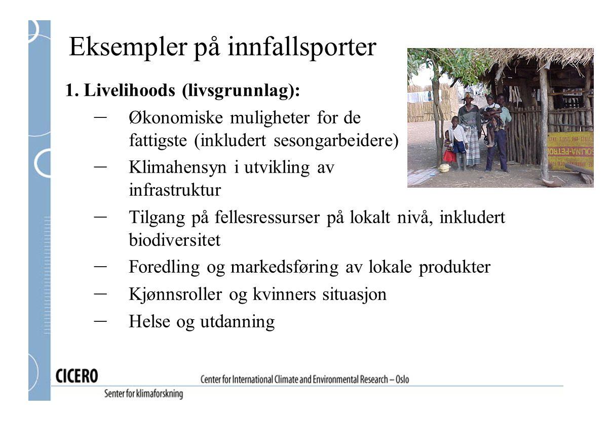 Eksempler på innfallsporter