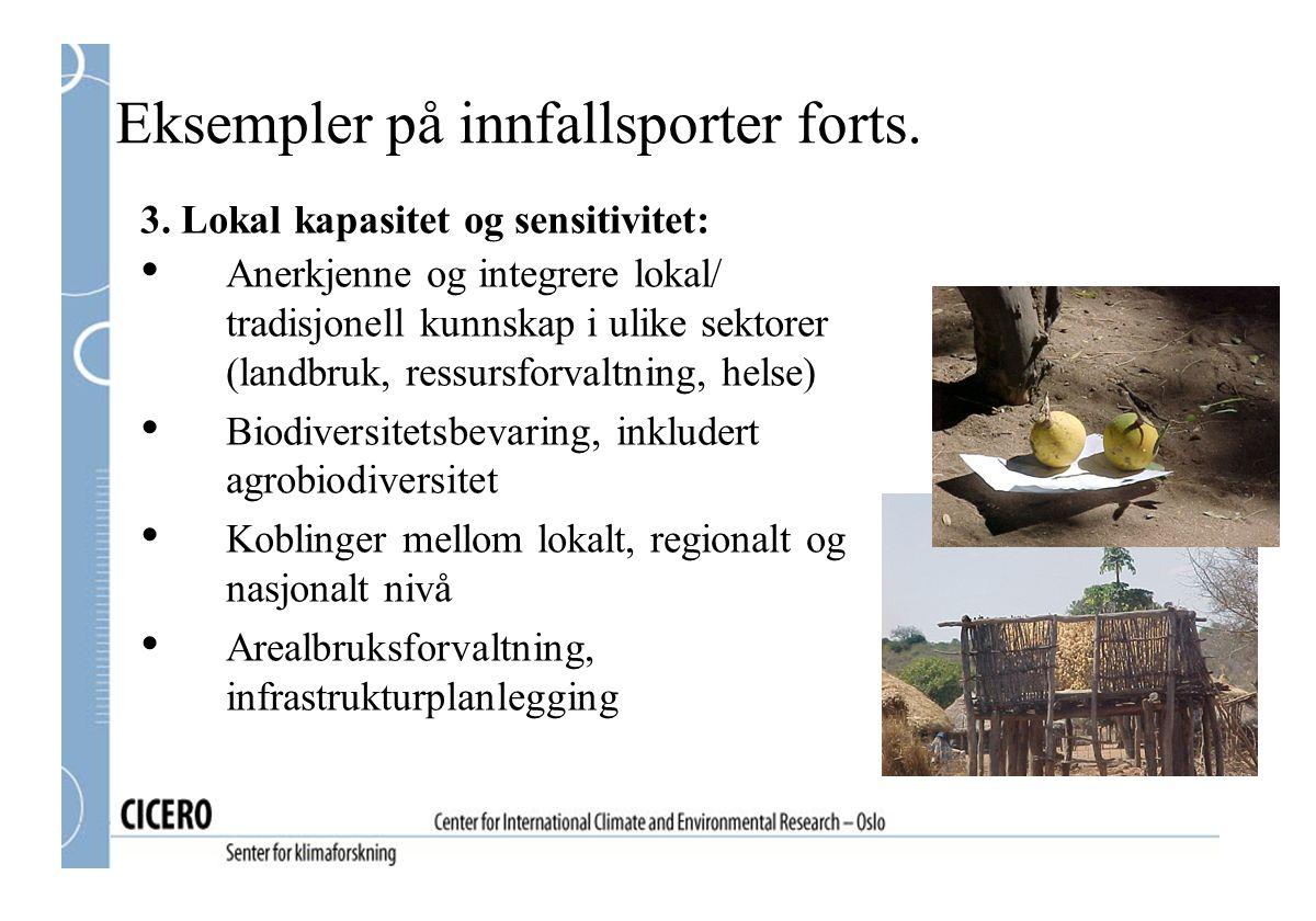 Eksempler på innfallsporter forts.