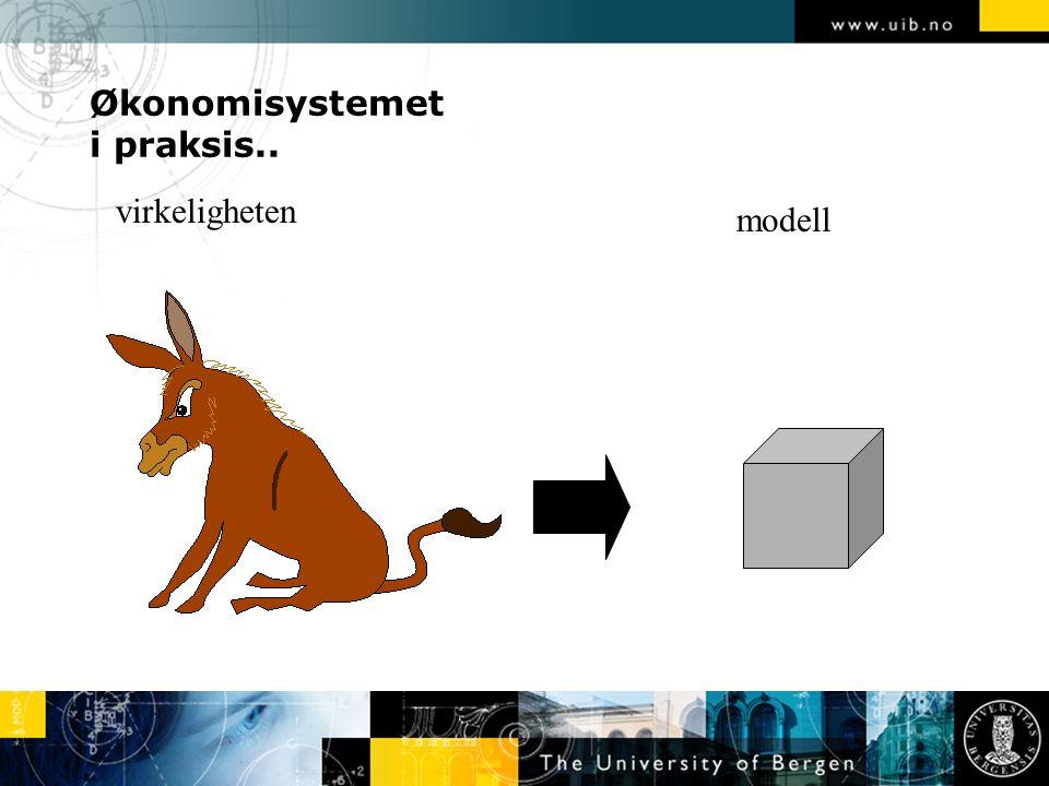Økonomisystemet i praksis..