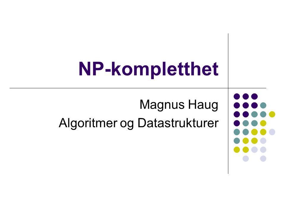 Magnus Haug Algoritmer og Datastrukturer