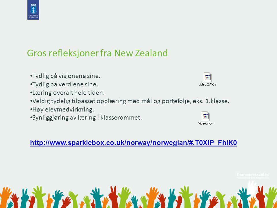 Gros refleksjoner fra New Zealand