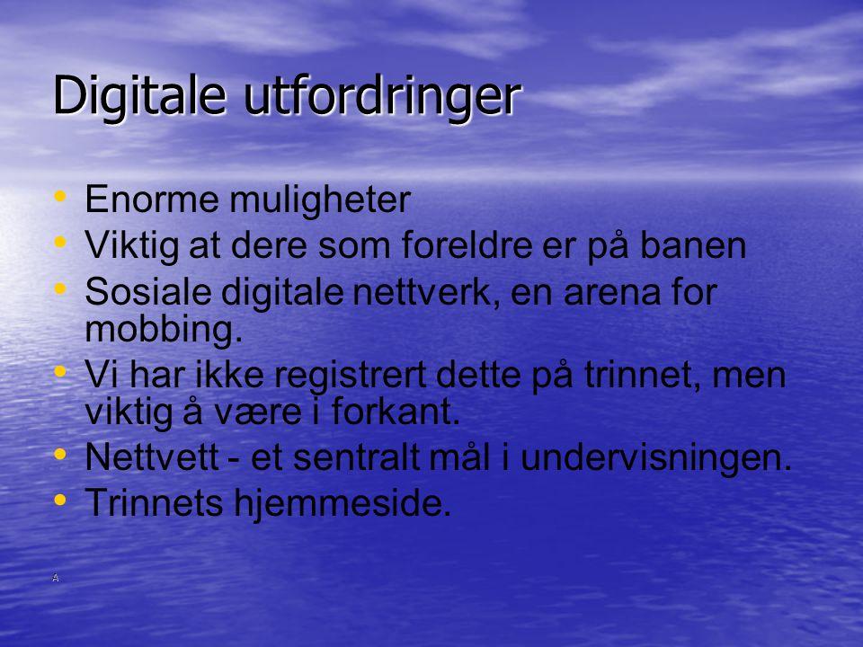 Digitale utfordringer