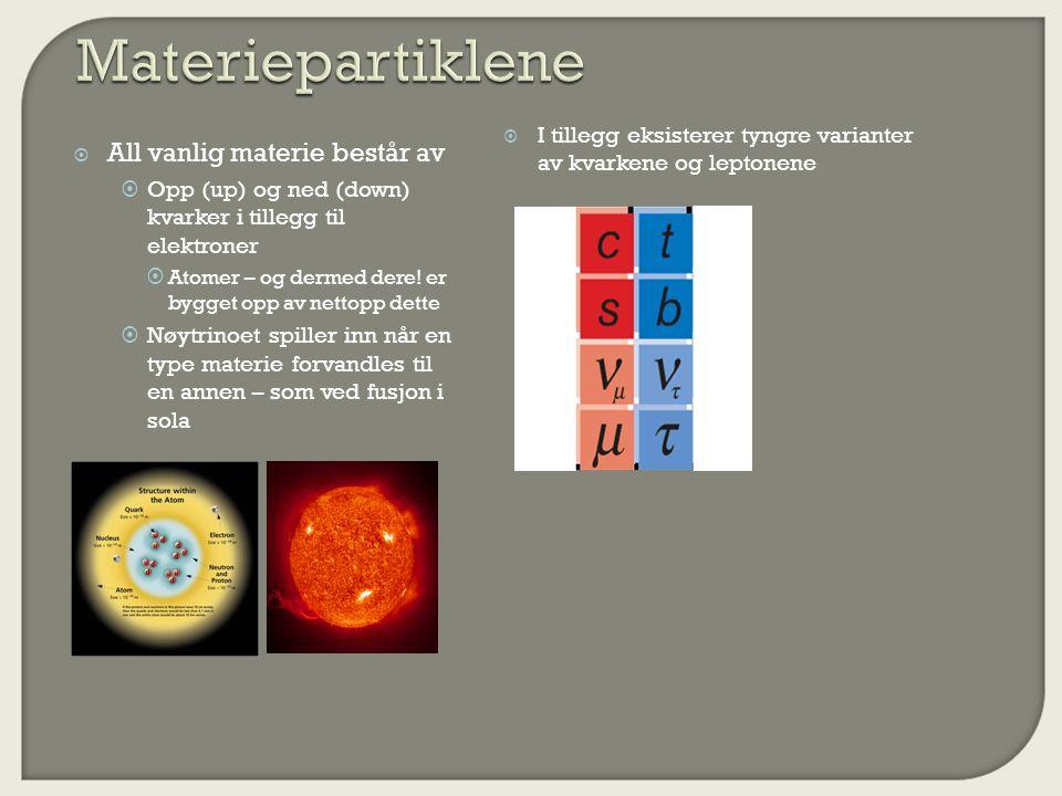 Materiepartiklene All vanlig materie består av
