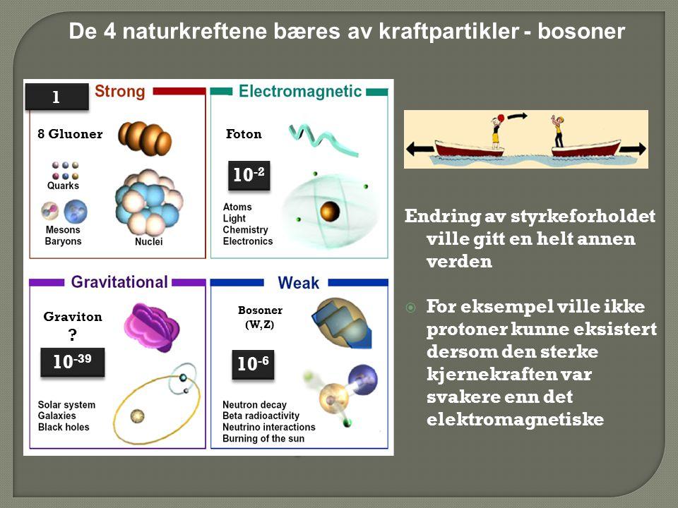 De 4 naturkreftene bæres av kraftpartikler - bosoner