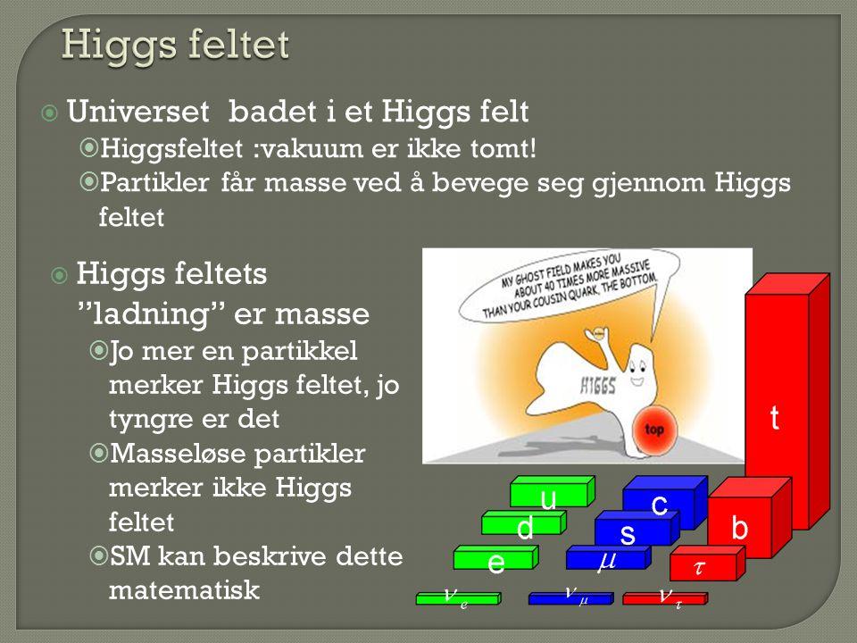 Higgs feltet Universet badet i et Higgs felt
