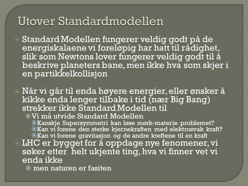 Utover Standardmodellen