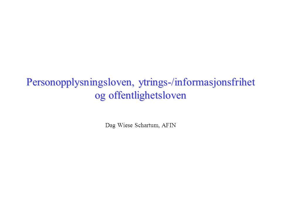 Dag Wiese Schartum, AFIN