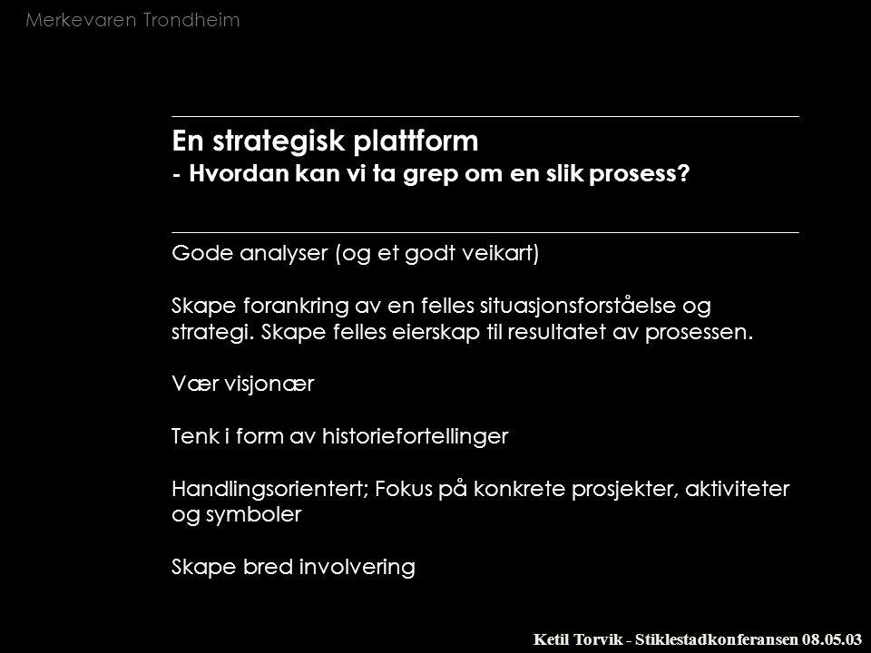 En strategisk plattform - Hvordan kan vi ta grep om en slik prosess