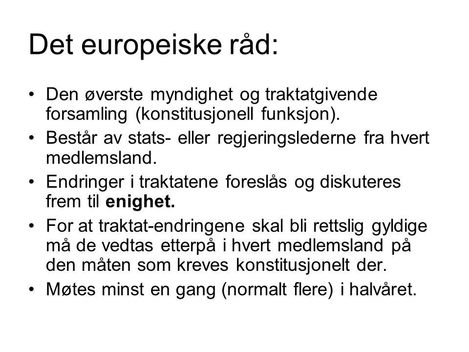 Det europeiske råd: Den øverste myndighet og traktatgivende forsamling (konstitusjonell funksjon).