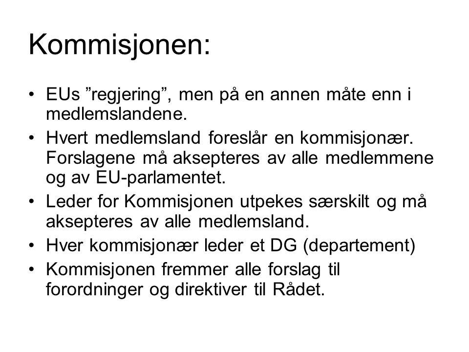 Kommisjonen: EUs regjering , men på en annen måte enn i medlemslandene.