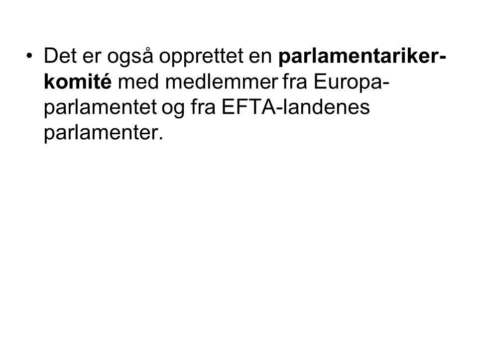 Det er også opprettet en parlamentariker-komité med medlemmer fra Europa-parlamentet og fra EFTA-landenes parlamenter.