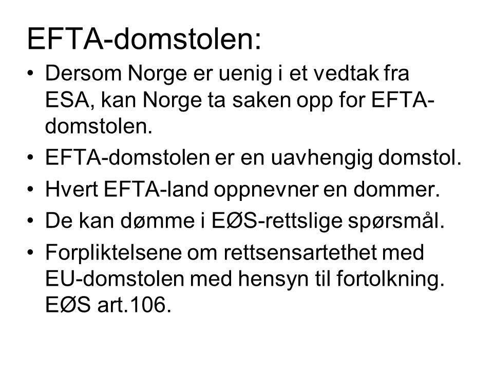 EFTA-domstolen: Dersom Norge er uenig i et vedtak fra ESA, kan Norge ta saken opp for EFTA-domstolen.