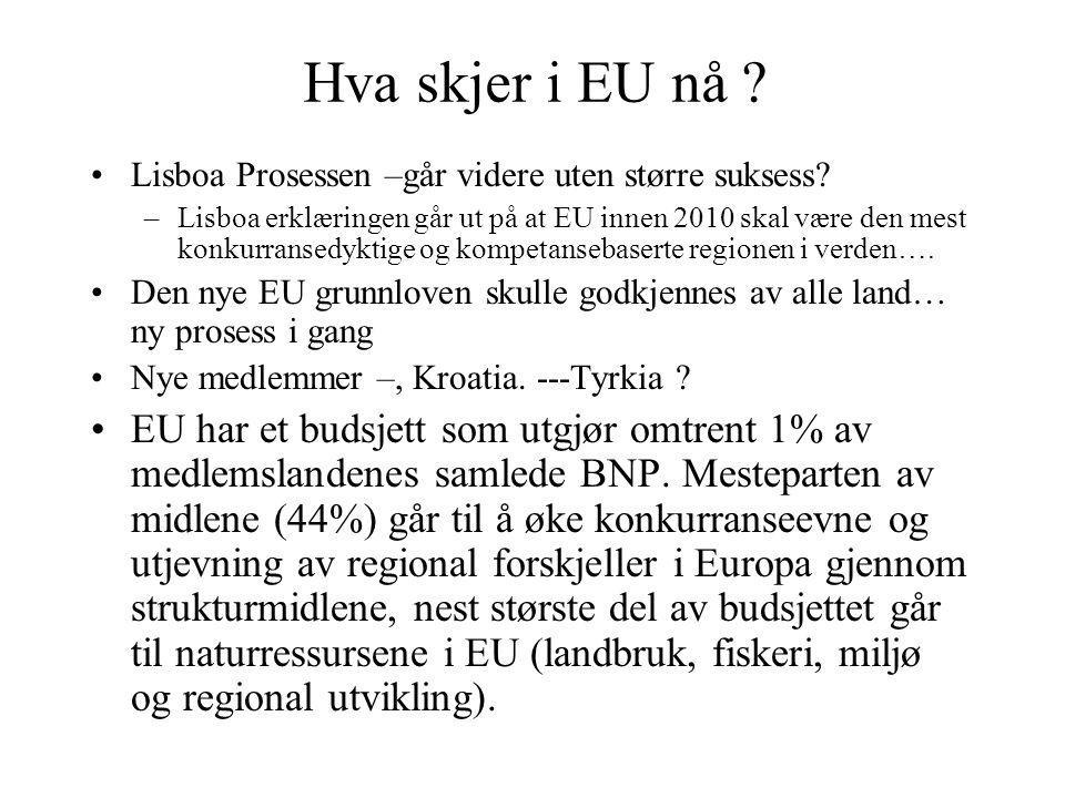 Hva skjer i EU nå Lisboa Prosessen –går videre uten større suksess