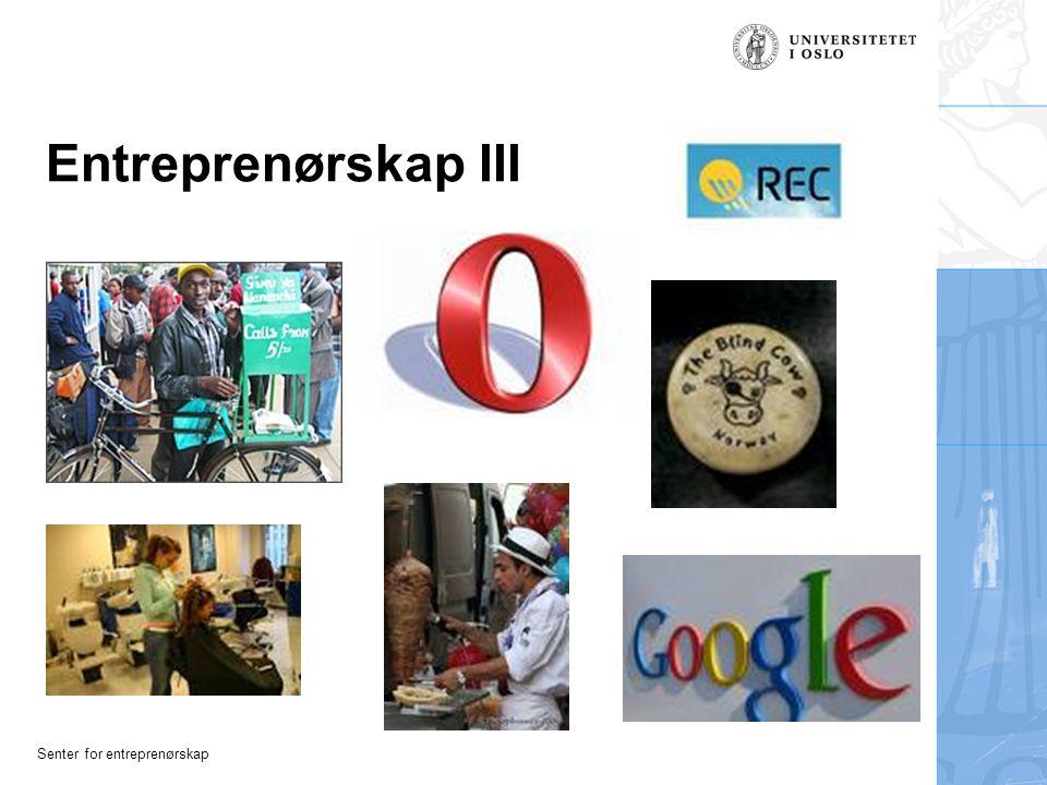Entreprenørskap III