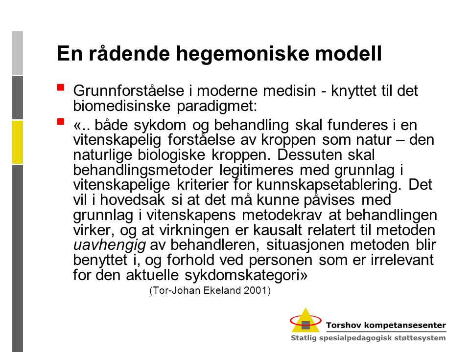 En rådende hegemoniske modell