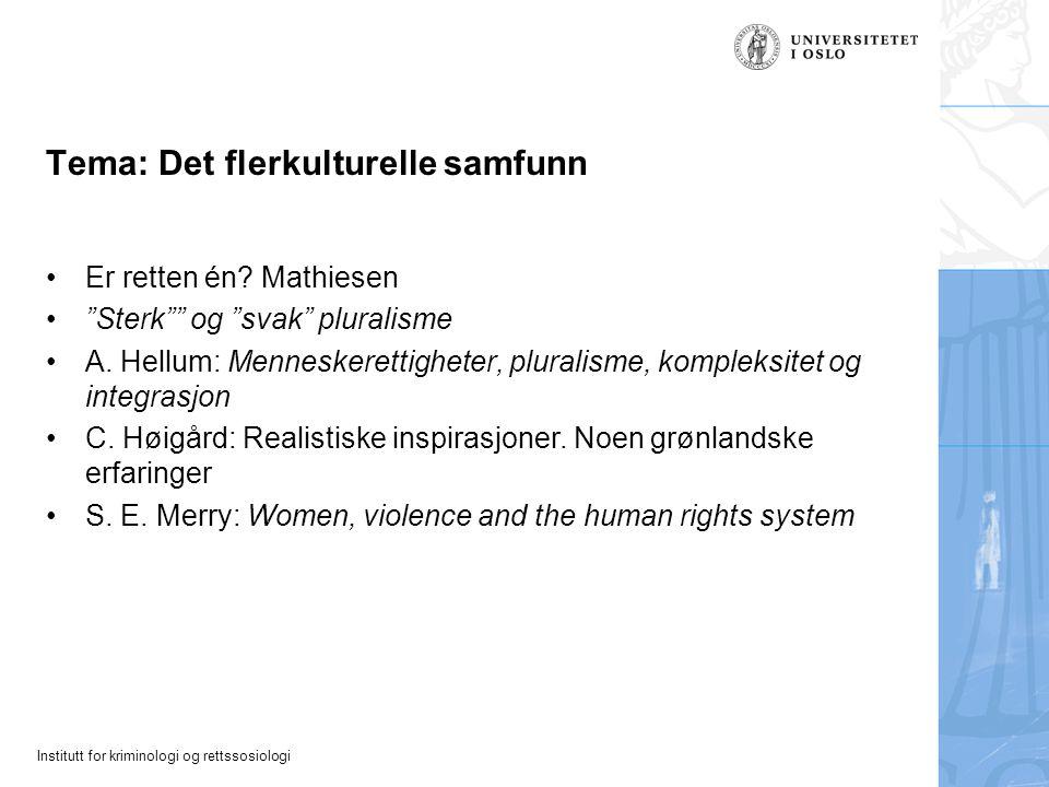 Tema: Det flerkulturelle samfunn