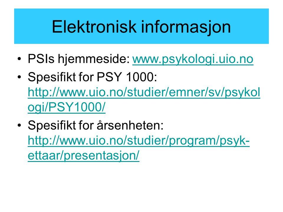 Elektronisk informasjon