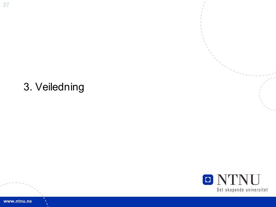 3. Veiledning