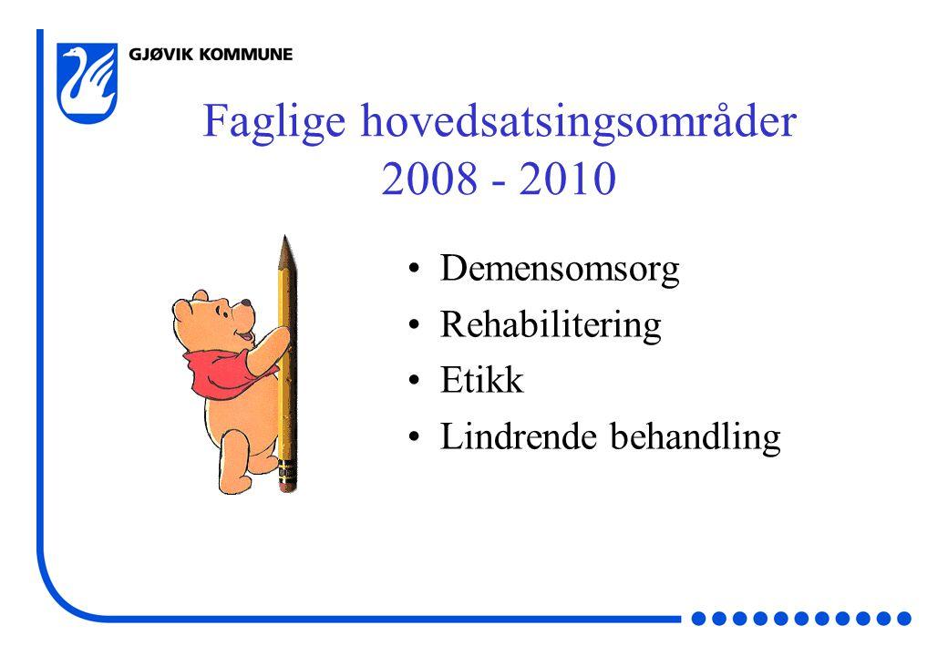 Faglige hovedsatsingsområder 2008 - 2010