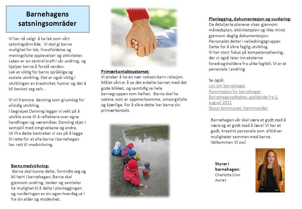 Barnehagens satsningsområder
