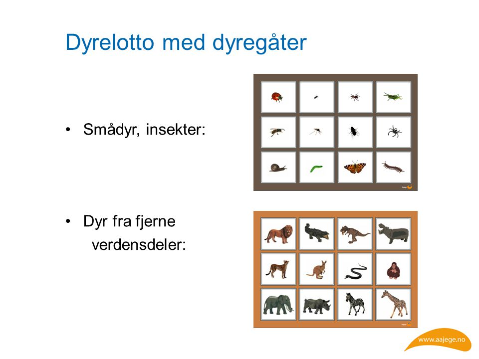 Dyrelotto med dyregåter