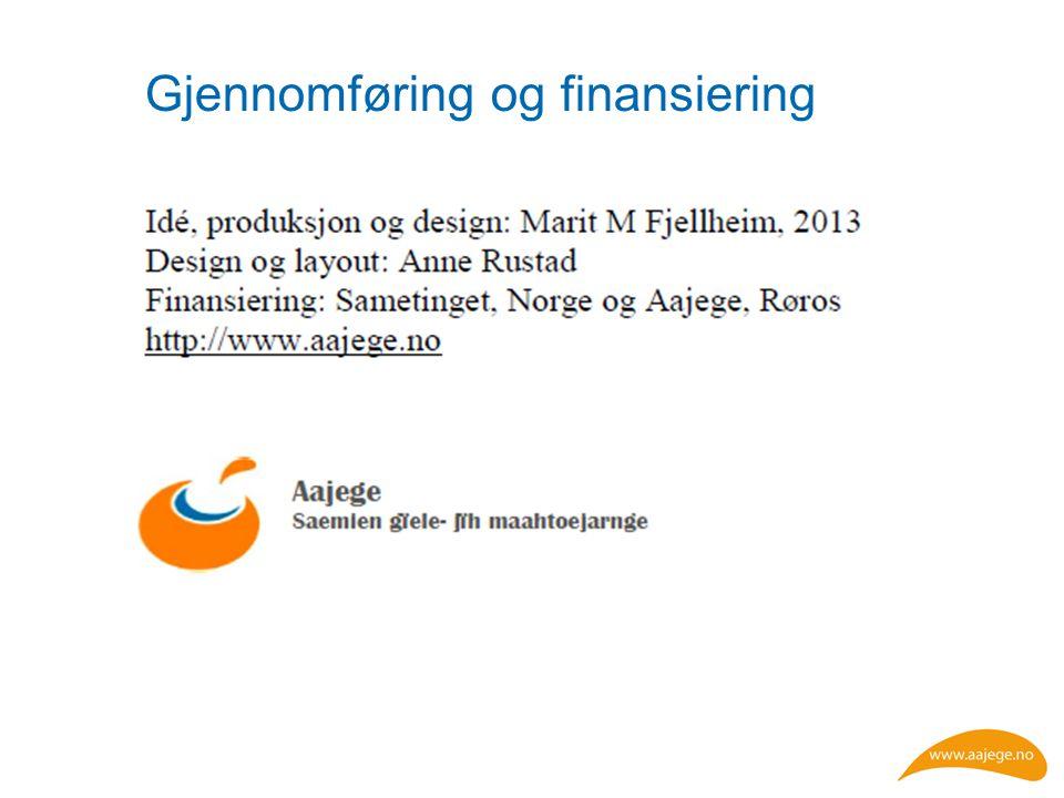 Gjennomføring og finansiering