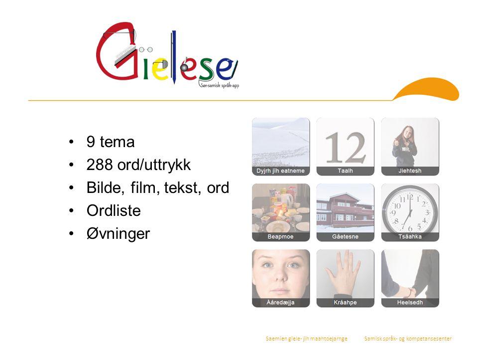 9 tema 288 ord/uttrykk Bilde, film, tekst, ord Ordliste Øvninger