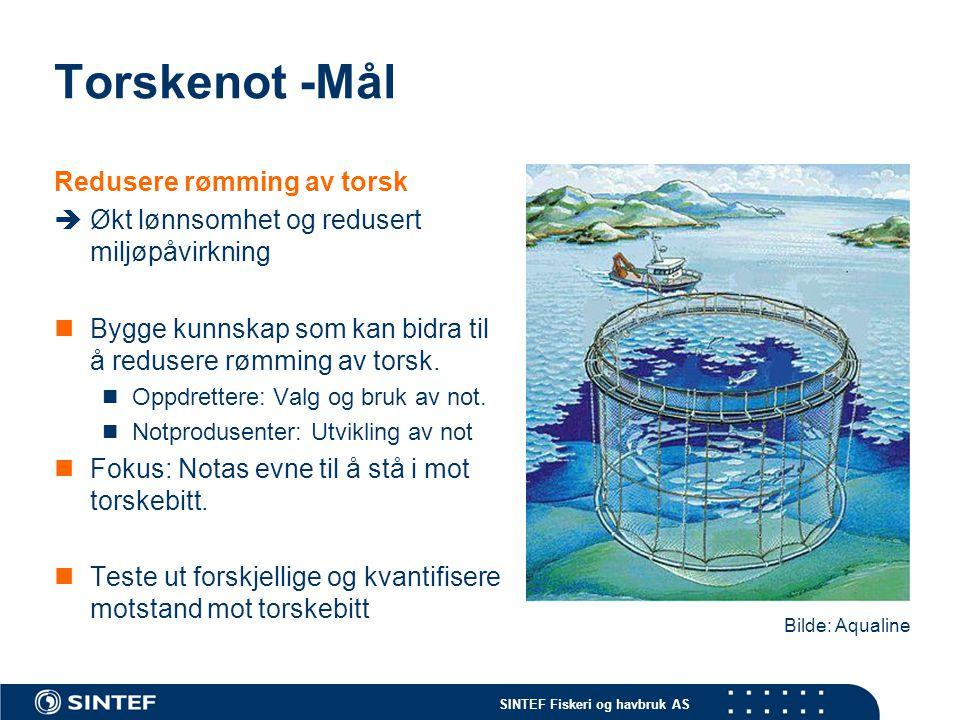 Torskenot -Mål Redusere rømming av torsk