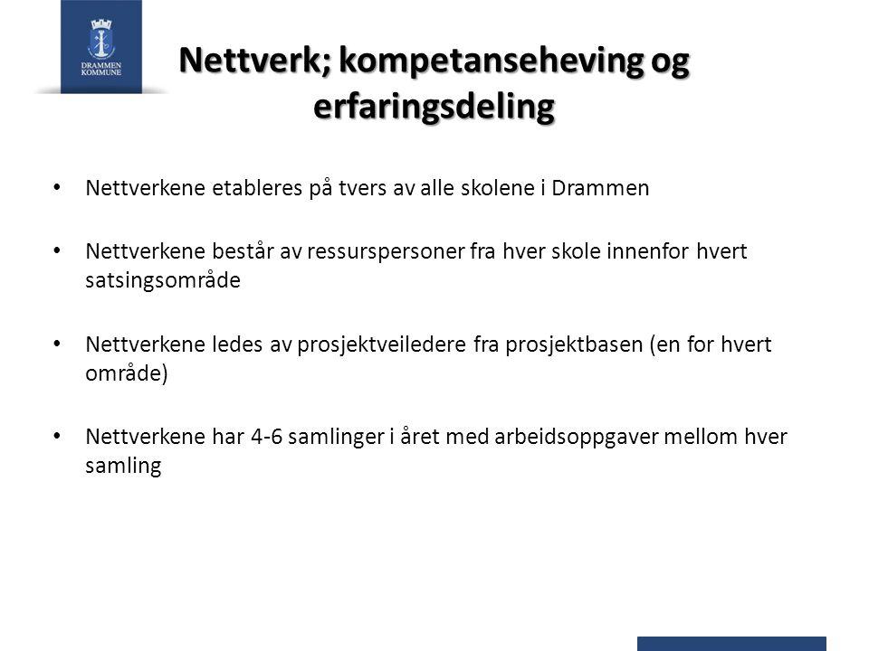 Nettverk; kompetanseheving og erfaringsdeling