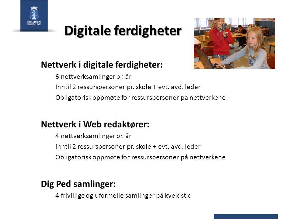Digitale ferdigheter Nettverk i digitale ferdigheter: