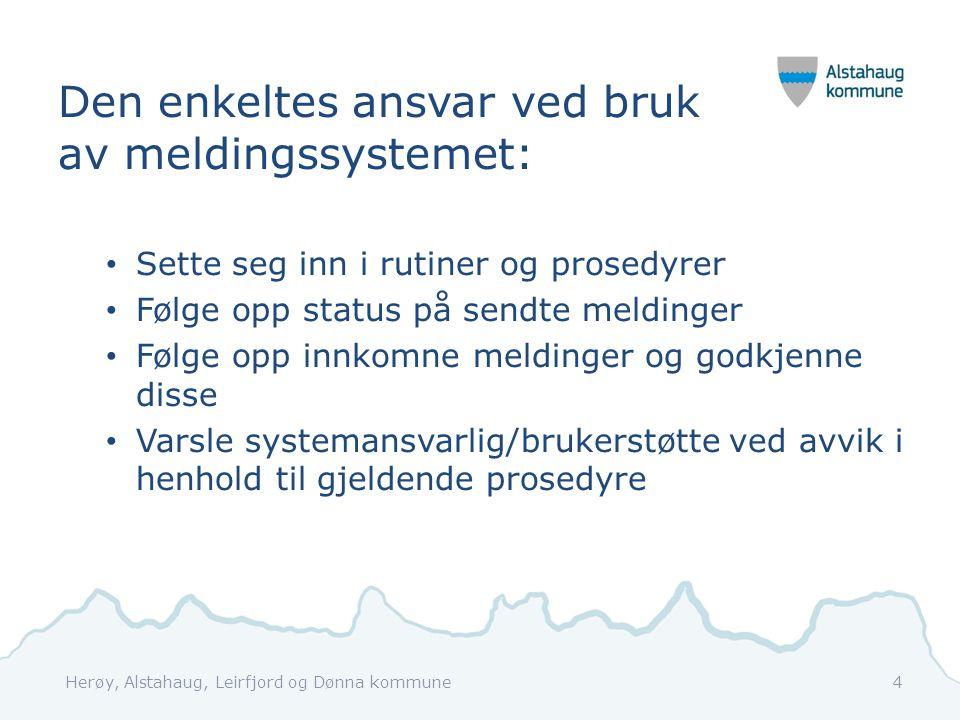 Den enkeltes ansvar ved bruk av meldingssystemet:
