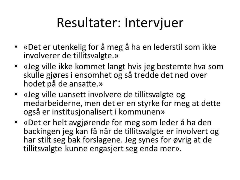 Resultater: Intervjuer