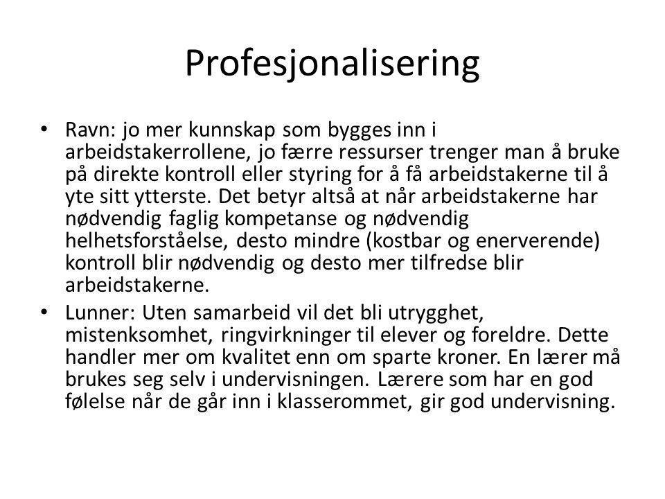 Profesjonalisering