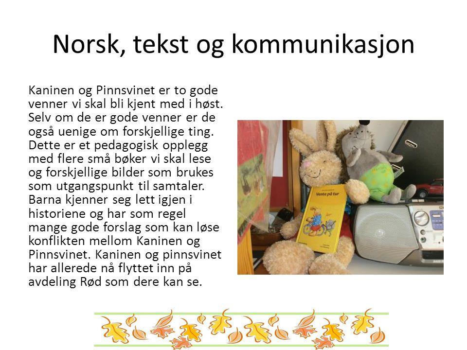 Norsk, tekst og kommunikasjon