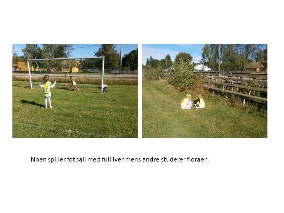 Noen spiller fotball med full iver mens andre studerer floraen.