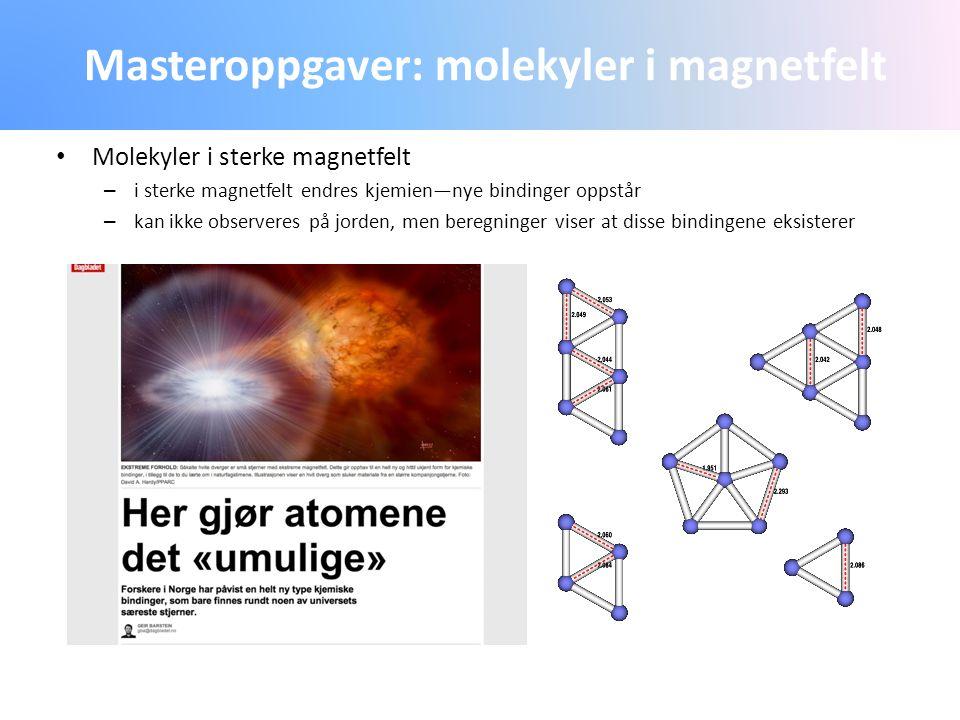 Masteroppgaver: molekyler i magnetfelt
