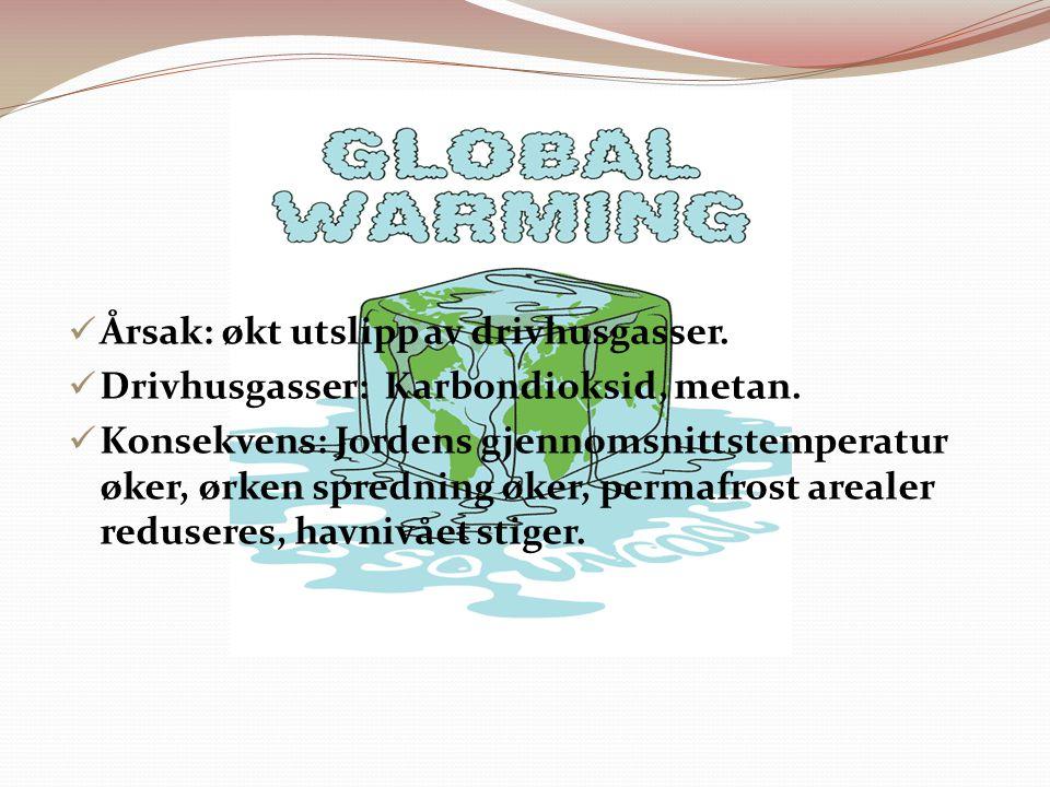 Årsak: økt utslipp av drivhusgasser.