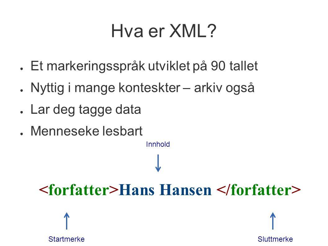 <forfatter>Hans Hansen </forfatter>