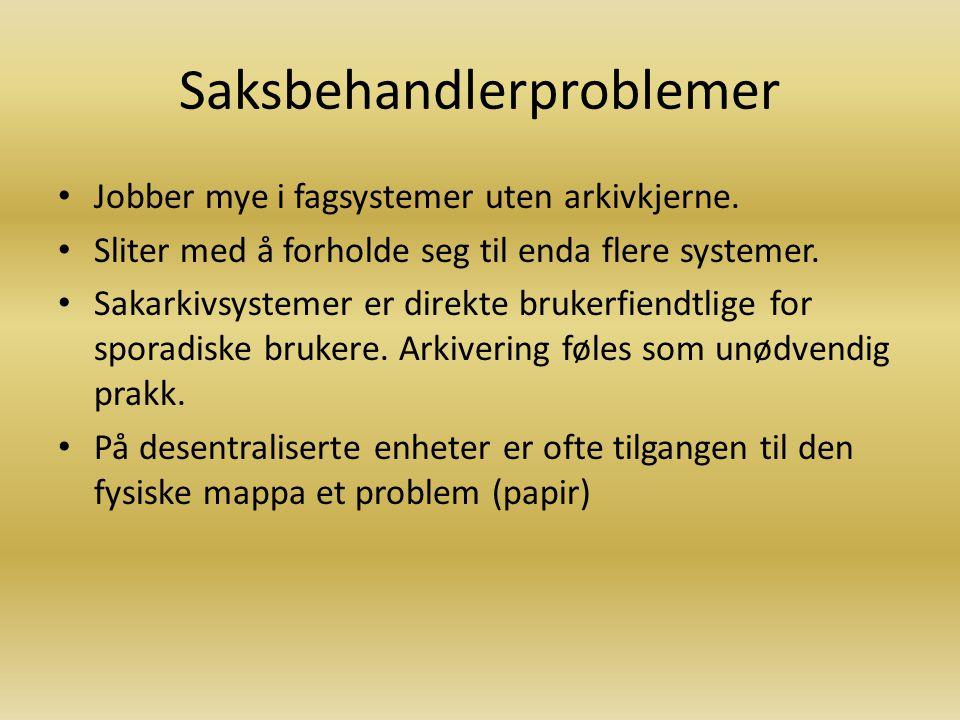 Saksbehandlerproblemer