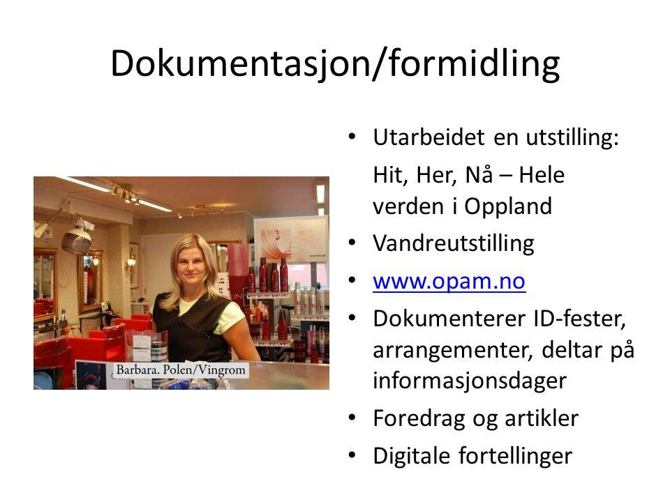 Dokumentasjon/formidling