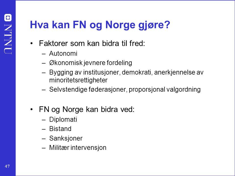 Hva kan FN og Norge gjøre