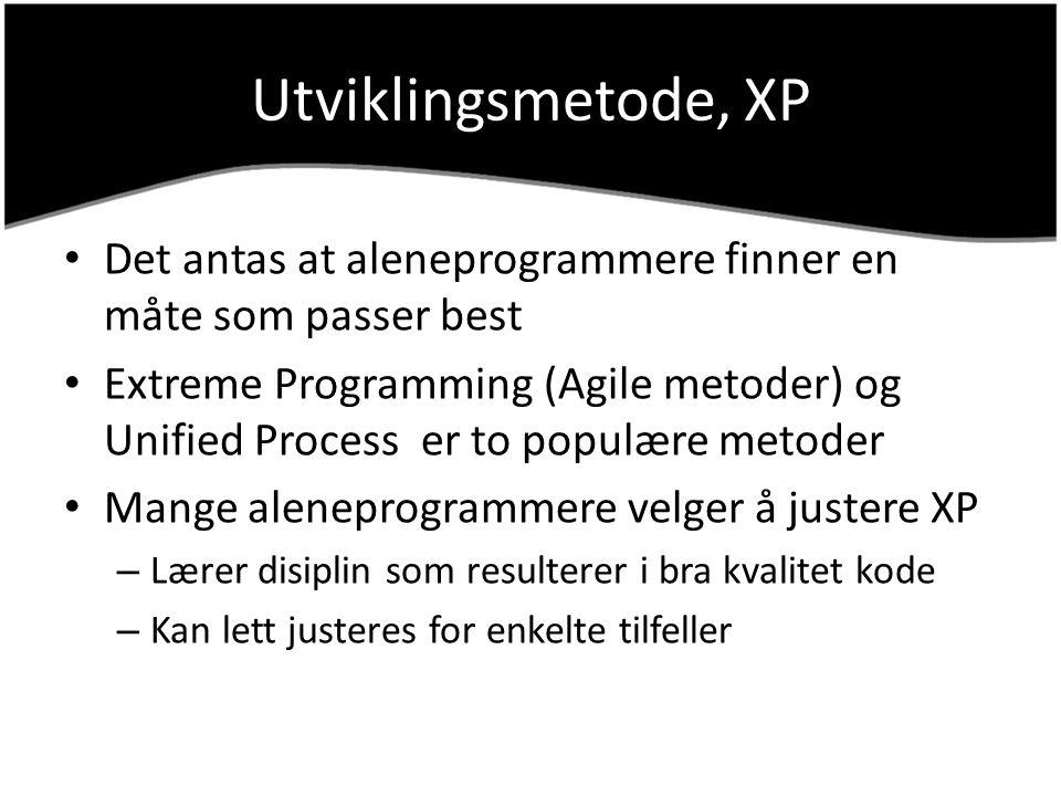 Utviklingsmetode, XP Det antas at aleneprogrammere finner en måte som passer best.